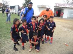Tigers Tournament 2014